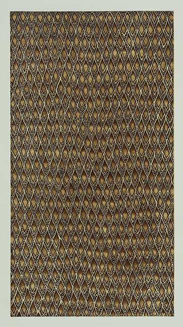 Baidam au tutwam (shark scales)