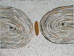 Kulyayi - Bushfire Series
