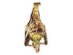 Wirambi - Gold